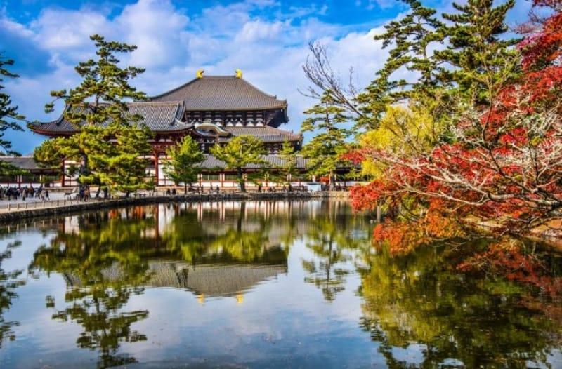【奈良】ワーケーション・移住におすすめの制度やホテルを紹介!